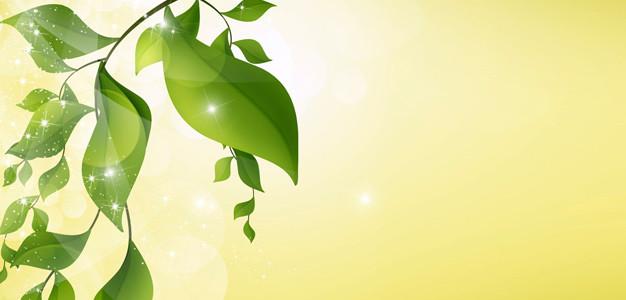 Wellness gutschein vorlage  Gutschein-Vorlage für Wellness und Massagen selber machen und ...