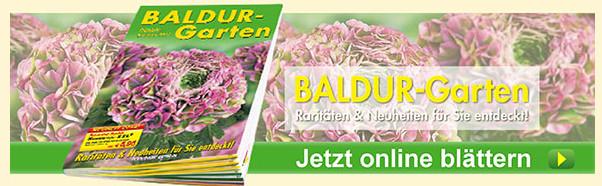ᐅ BALDUR-GARTEN Gutschein Okt. 18 ## 50 % CODE + 7 weitere on