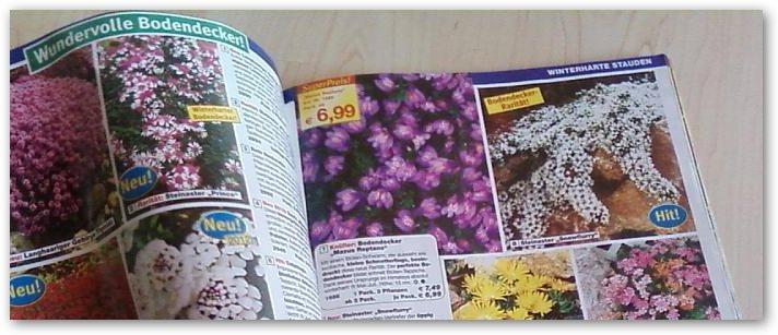 Gartengestaltung katalog bestellen